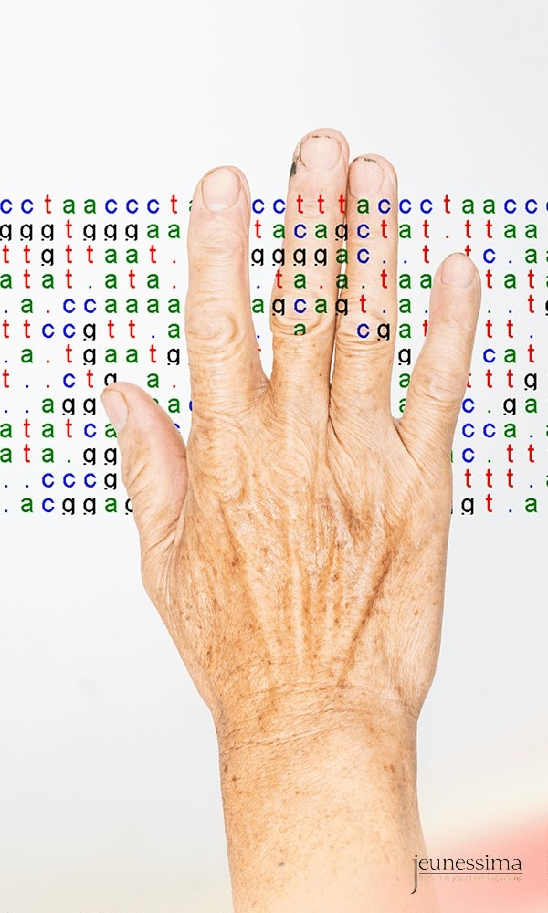 Aging hand that snips the genetic code